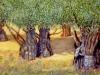 il-monte-degli-ulivi
